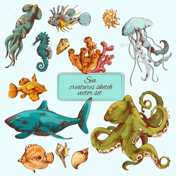 Sea Creatures Sketch Colored - Animals Characters