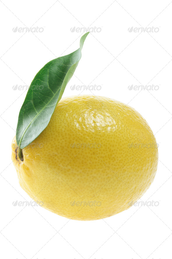 Lemon with Leaf - Stock Photo - Images