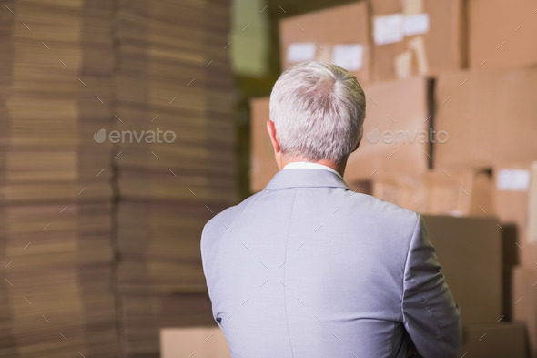 Rear view of manager standing in the warehouse - Stock Photo - Images
