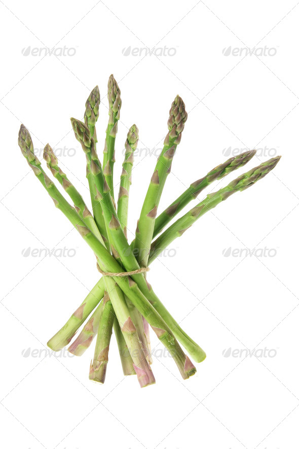 Asparagus - Stock Photo - Images