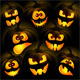 Pumpkins on a Dark Background - GraphicRiver Item for Sale