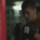 Boxer Boxing  - VideoHive Item for Sale