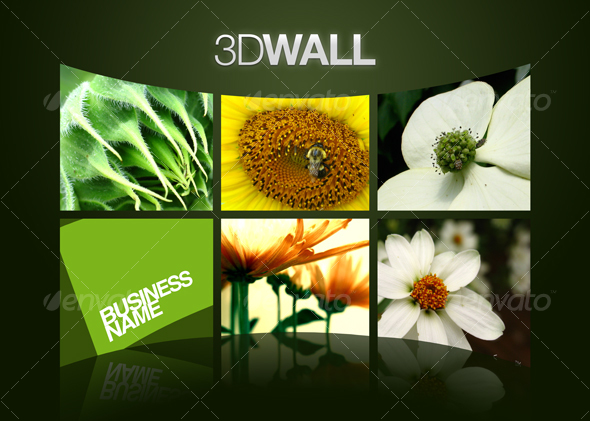 3D Wall - Miscellaneous Displays