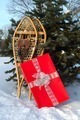 Snowshoes And Gift - PhotoDune Item for Sale