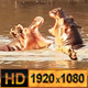 Wild Hippo Fighting In the Water - VideoHive Item for Sale