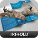 Creative Corporate Tri-Fold Brochure Vol 26 - GraphicRiver Item for Sale