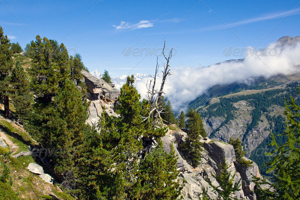 Scenery in the swiss alps - Stock Photo - Images