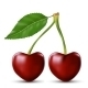 Two Lovers Cherry Like Heart - GraphicRiver Item for Sale