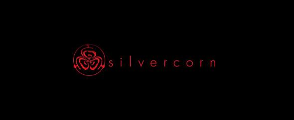 Logo sc 590x242px