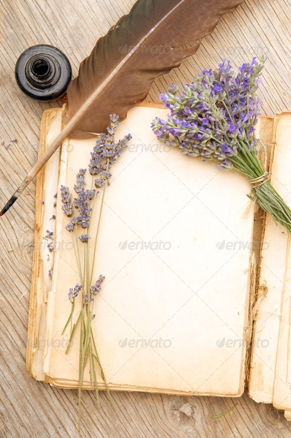 Old book with lavender flowers - Stock Photo - Images