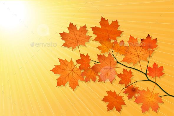 Autumn Background - Seasons/Holidays Conceptual