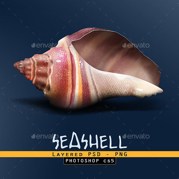 Sea Shell  - Objects Illustrations