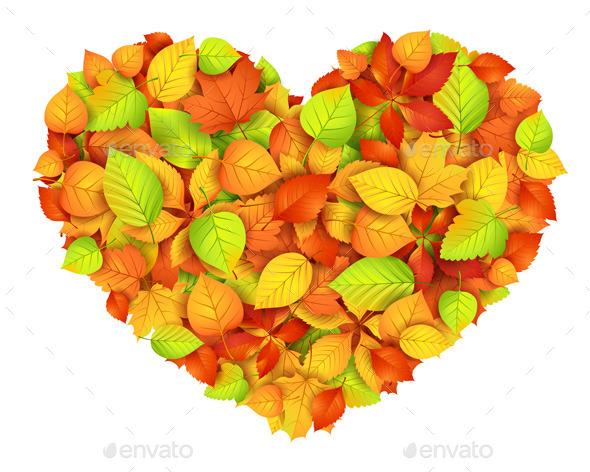 Autumn Heart - Flowers & Plants Nature