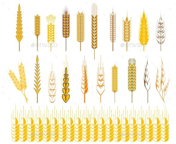 Wheat and Cereals Symbols - Flowers & Plants Nature