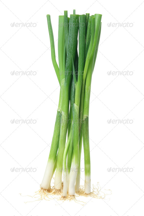 Green Onions - Stock Photo - Images