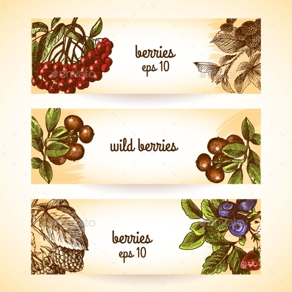 Berry Banners - Food Objects