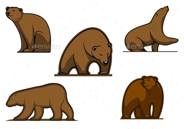 Brown Colored Bear Characters - Animals Characters