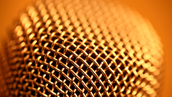 Microphone 161