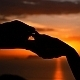 Putting Wedding Ring at Sunset - VideoHive Item for Sale