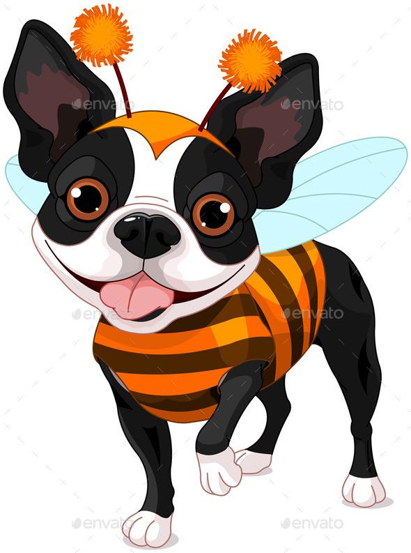 Halloween Boston Terrier - Halloween Seasons/Holidays