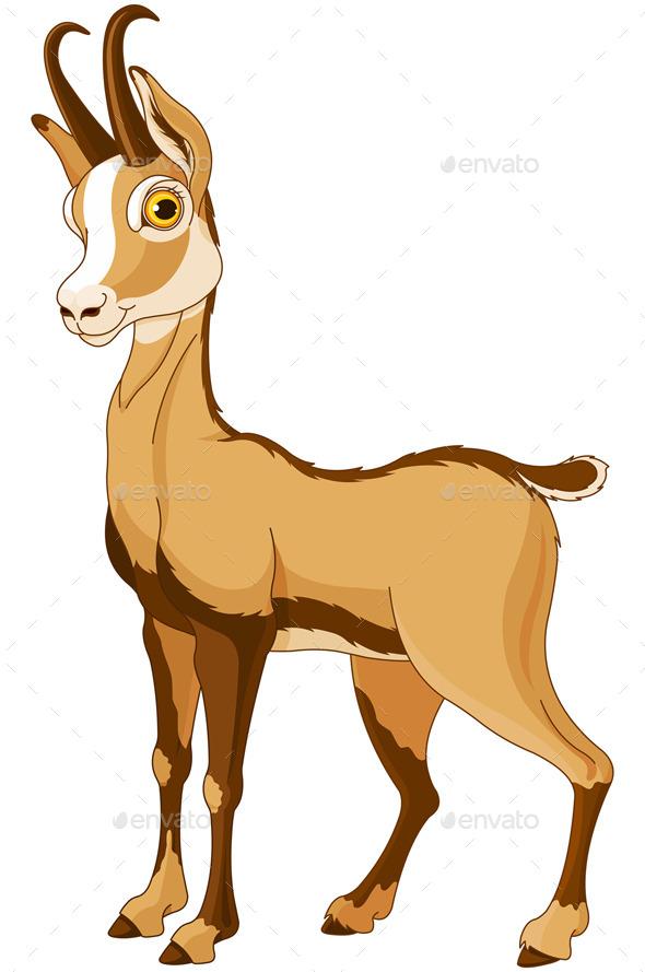 Chamois (Rupicapra) - Animals Characters