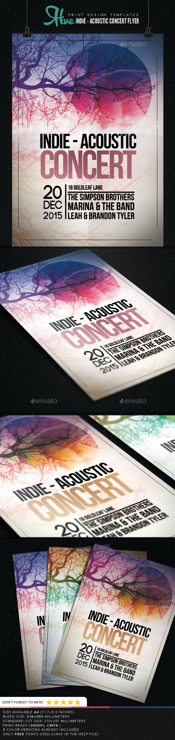 Indie - Acoustic Concert Flyer  - Concerts Events