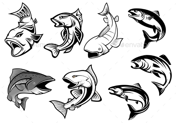 Cartoon Salmons Fish Set - Animals Characters