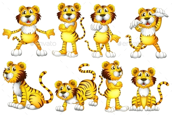 Tiger Set - Animals Characters