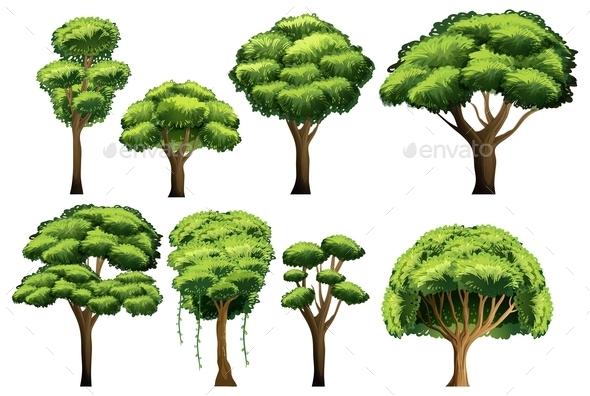 Tree Set - Flowers & Plants Nature