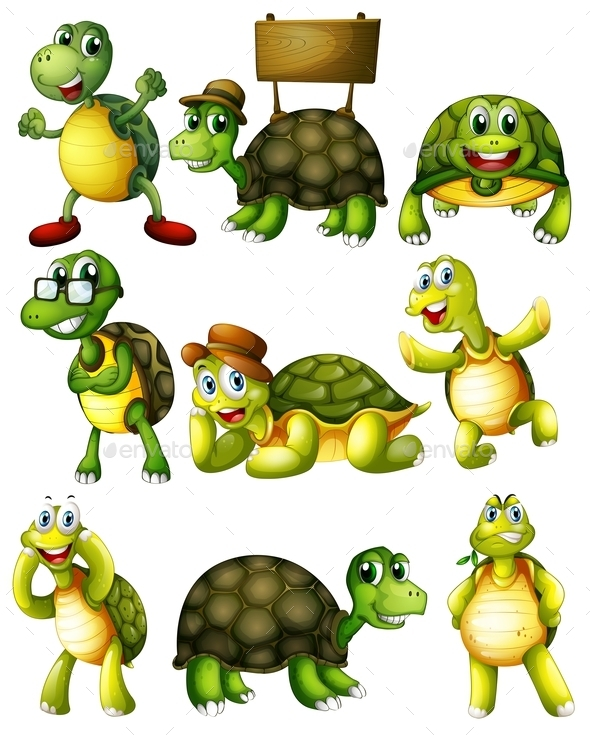 Turtle Actions - Animals Characters