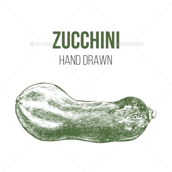 Hand Drawn Zucchini - Food Objects