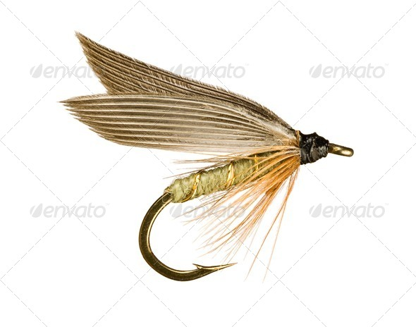 Fly Fishing Lure - Stock Photo - Images