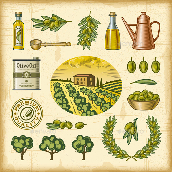 Vintage Colorful Olive Harvest Set - Decorative Symbols Decorative
