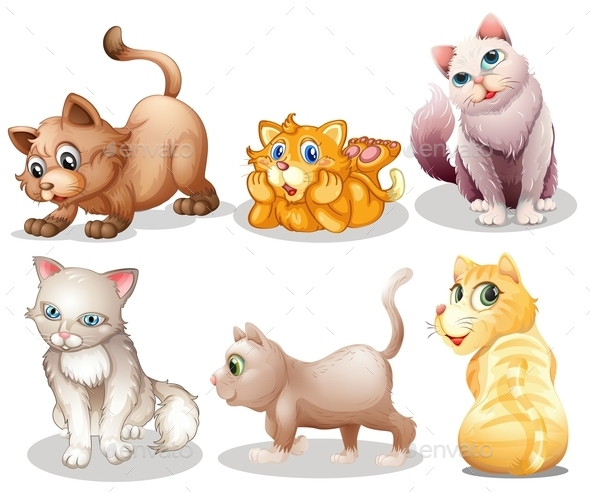 Playful Cats - Animals Characters