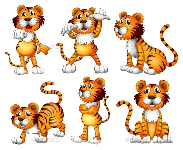 Six Positions of a Tiger - Animals Characters