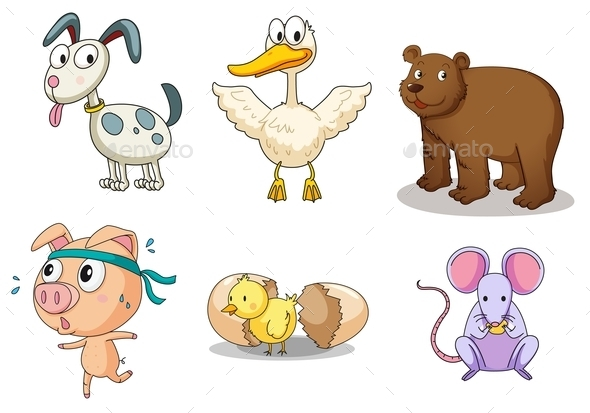 Animal Collection - Animals Characters