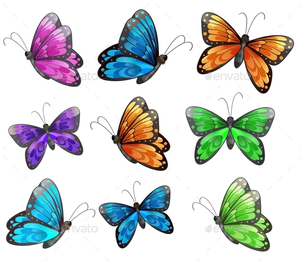 Nine Colorful Butterflies - Animals Characters