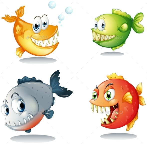 Four Different Kinds of Fishes with Big Fangs - Animals Characters