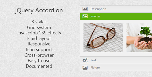 jQuery Accordion - CodeCanyon Item for Sale