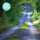 Quiet Country Lane - VideoHive Item for Sale