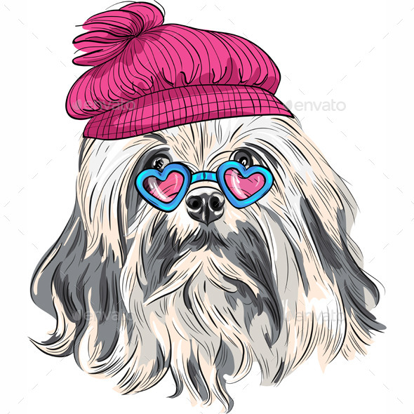 Cartoon Hipster Lowchen Dog  - Animals Characters