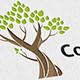 Cool Tree Logo