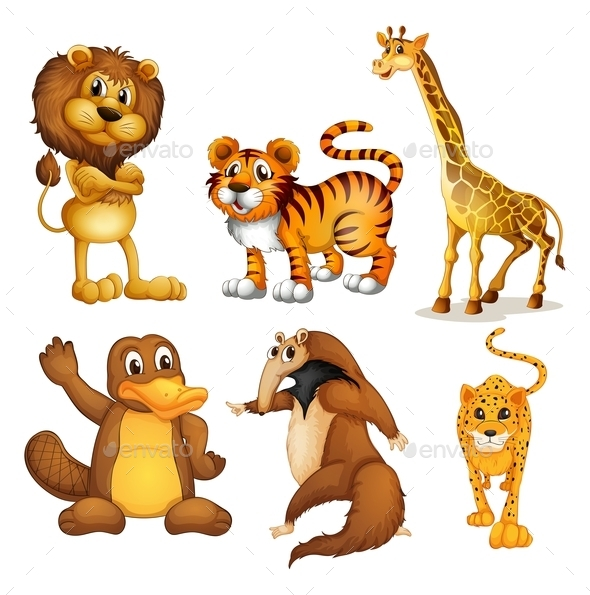 Different Kinds of Land Animals - Animals Characters