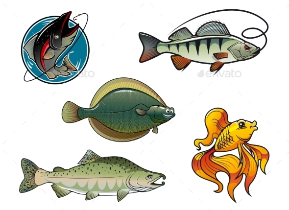 Salmon, Flounder, Perch and Goldfish - Animals Characters