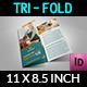 Veterinarian Clinic Tri-Fold Brochure Vol. 3 - GraphicRiver Item for Sale