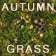 Autumn Grass Texture Tile