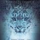 Jungle Sanctuary Flyer Template - GraphicRiver Item for Sale