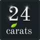 24 Carats - Business Portfolio Nulled