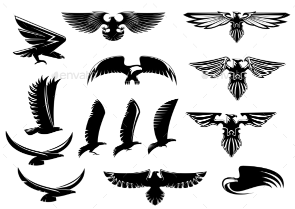 Eagle, Falcon and Hawk Birds Set - Animals Characters