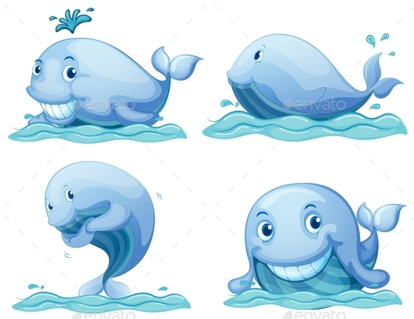 Blue Whales - Animals Characters